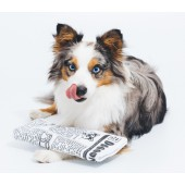 Pet Qwerks Newspaper Krinkle & Squeake - Large - 24,5 x 10,5 cm