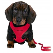 Puppy Harnas soft - 26/34 cm-10 mm - ROOD