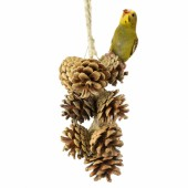 Back Zoo Nature Pine Cone Garland