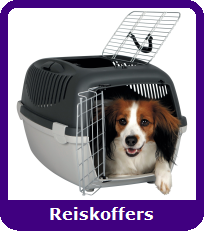Reiskoffers